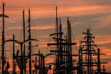 Masts of yachts at sunrise in port at the finale of The Tall Ships Races 2017 in Szczecin - 172815717