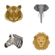 Tiger, lion, elephant, zebra, Realistic animals set collection icons in cartoon style vector symbol stock illustration web.