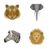 Tiger, lion, elephant, zebra, Realistic animals set collection icons in cartoon style vector symbol stock illustration web.