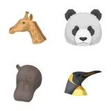 Panda, giraffe, hippopotamus, penguin, Realistic animals set collection icons in cartoon style vector symbol stock illustration web. - 172819753