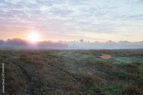 Deurstickers Lavendel Sunrise in fields