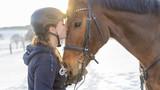 Frau Reiterin küsst Hannoveraner Pferd vor Schneelandschaft
