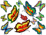 Twelve colorful bright butterflies
