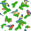 Seamless pattern with fir paws, titmouse and bullfinches / There are some titmouse and bullfinches sitting on the fir paws with fir-cones  - 172873720
