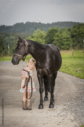 Little girl with horse in a meadow Poster