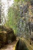 Levadas / Wasserkanäle auf der Insel Madeira in Portugal