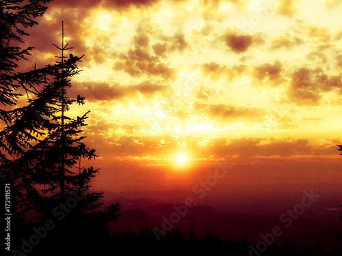 Foto op Plexiglas Zwavel geel sunset