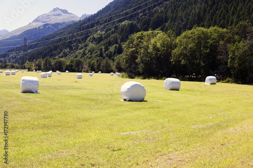 Spoed canvasdoek 2cm dik Meloen A beautiful landscape in the alps switzerland