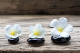 Pile of zen stones and Frangipani flower isolated on white background - 172970716