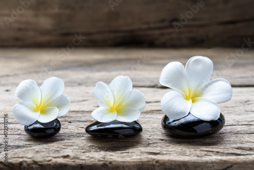 Foto op Canvas Zen Pile of zen stones and Frangipani flower isolated on white background
