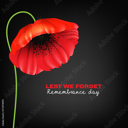 Remembrance Day greeting card. Beautiful. realistic red poppy flower on black background with lettering