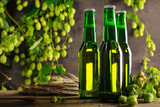 Three green bottle of beer on gray wooden wall with hops. - 173004584