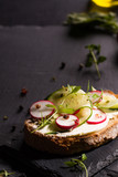 Sandwich with red radish, cucumber and fresh herbs and pepper. - 173010312