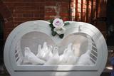 Weiße Tauben in Herzförmigem Käfig - 173020559