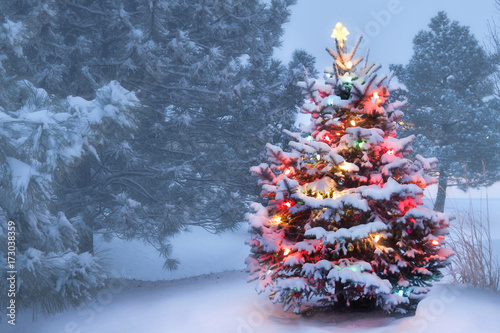 Keuken foto achterwand Bossen This decorated outdoor snow covered Christmas Tree glows brightly on this foggy Christmas morning.