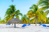 Exotic tropical empty sandy beach with umbrellas and beach beds surrounded by palm trees
