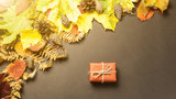 presents on the background of autumn leaves concept of autumn - 173164521
