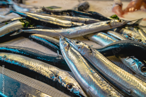 Tuinposter Palermo agugles on the fish bench in a Mediterranean market
