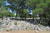 Agora de la cité de Priène en Anatolie - 173230732