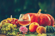 pumpkins and grapes. a glass of wine. on a blurred background