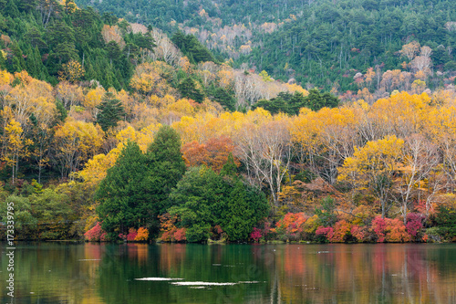 Tuinposter Herfst Autumn leaves at Yuno lake japan