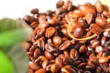 コーヒー 豆 焙煎 コーヒーブレイク - 173375557
