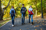 Nordic walking - active people working out  - 173419988