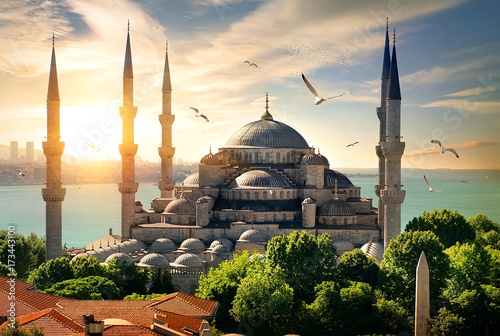 Seagulls over Blue Mosque Poster