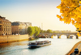 Pont Neuf and Seine river with tour boat at sunny autumn sunset, Paris, France