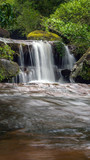 Stream in the tropical forest - 173475383