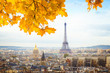 skyline of Paris city with eiffel tower from above at fall, France, toned