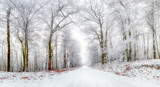Winter landscape. Winter road and trees covered with snow - 173499906