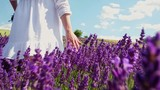 Hippie girl walking in lavender field, freedom concept - 173516124