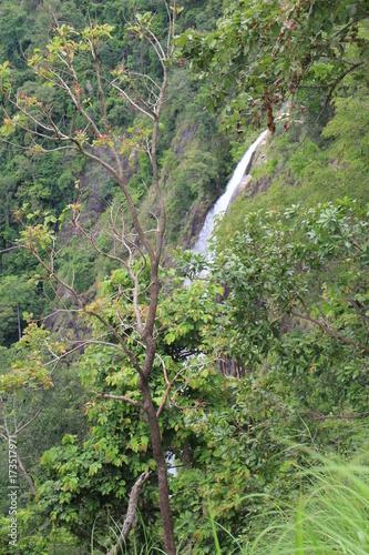 Spoed canvasdoek 2cm dik Olijf Sri Lanka