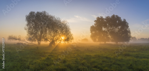 Fotobehang Zomer beautiful fairytale sunrise over a foggy meadow