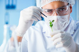 Biotechnology concept with scientist in lab - 173566393