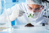 Biotechnology concept with scientist in lab - 173568582