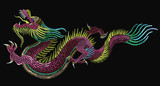 Embroidery chinese dragons. Classical embroidery asian dragons. Art dragons t-shirt design. Clothes, textile design template - 173629380