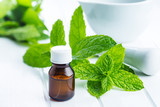 Bottle of essential mint oil. - 173652961