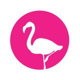 Icono plano flamenco en circulo rosa