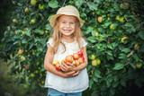 Happy little girl holding apples in the garden - 173688350