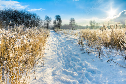 Foto op Aluminium Blauw Scenic winter landscape with snow on road in countryside, sun on blue sky in sunny winter weather
