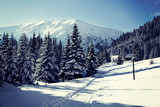 Snowy view in Tatra Mountains, winter landscapes series. Mountain hut in the background