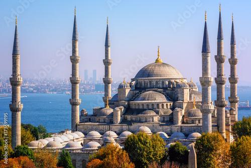 Blue Mosque Sultanahmet Camii, Istanbul, Turkey Poster