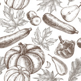 Decorative seamless pattern with Ink hand drawn pumpkins, pears, zucchini and maple, oak leaves. Autumn harvest elements texture. Vector illustration. - 173708774
