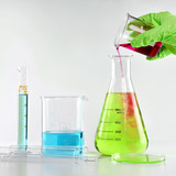 Chemist formulating dangerous solution substances, Scientist with equipment and science experiments, Laboratory glassware containing toxic chemical liquid. - 173731905