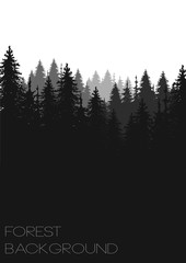 hand drawn vector nature illustration with  fir spruce forest on first view. silhouette landscape. using for travel and nature background and card © ptitza tzaritza