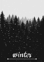 hand drawn vector nature illustration with snow fir spruce forest on first view. winter silhouette landscape. using for travel and nature background and card © ptitza tzaritza