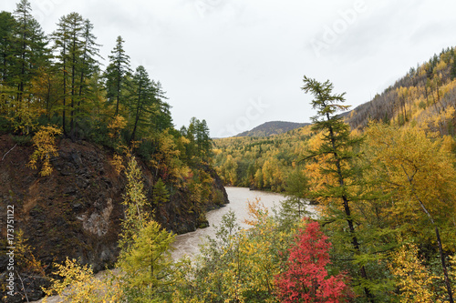 Fotobehang Bergrivier Beautiful Kamchatka landscape: picturesque mountain river flowing among roky mountain through the colorful forest in autumn season. Eurasia, Russian Far East, Kamchatka Peninsula.