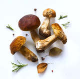 autumn cooking  background;  organic porcini Mushroom; seasoning forest Mushroom and Italian Spices Herb - 173824527